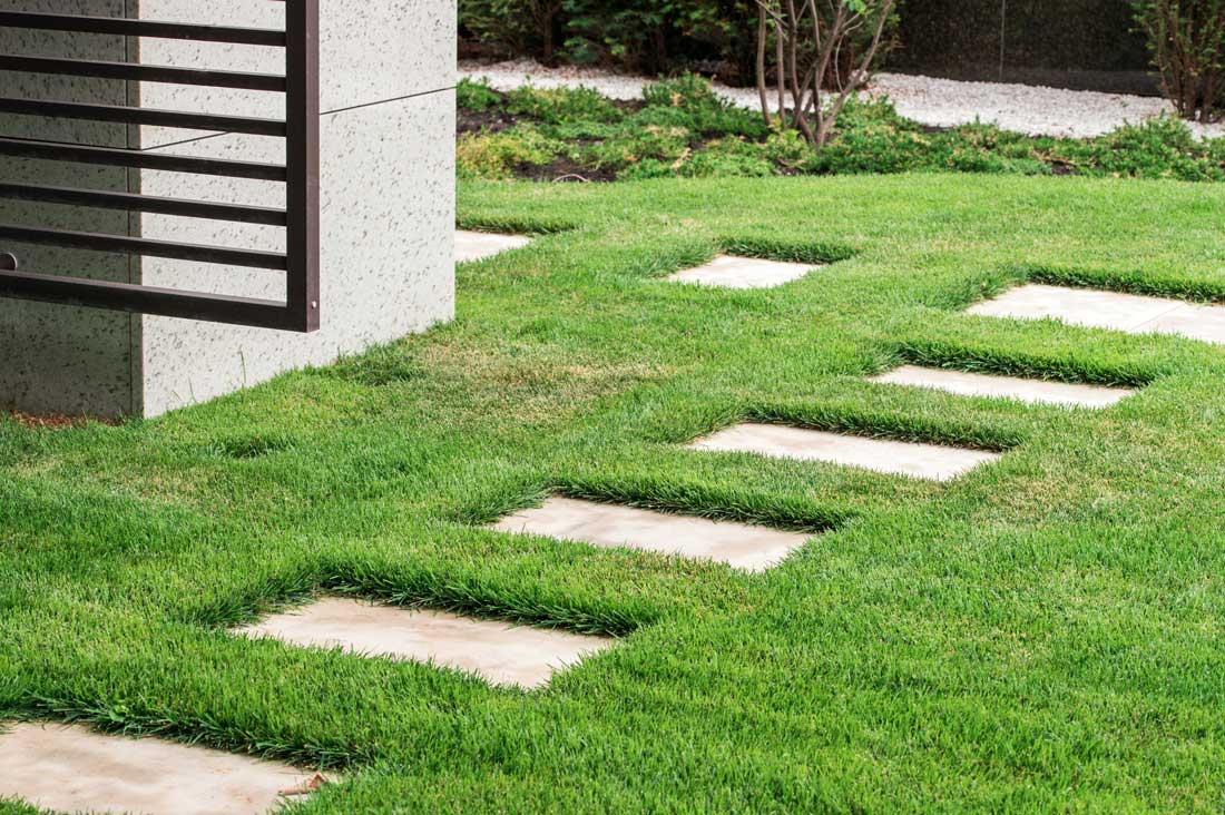 stone paved path in lawn
