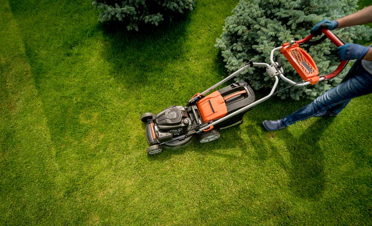 gardener-mowing-lawns-in-back-yard